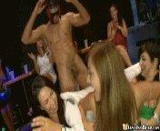 Party Dnzb