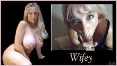 Pornstars Tributes Tribute Wifey S
