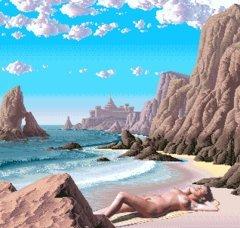 beach bird nude